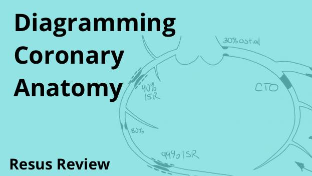 Coronary Artery Diagramming